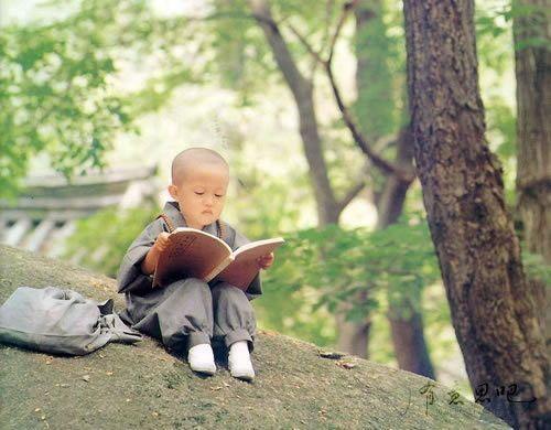 L'image d'un petit moine